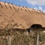 Jernalderlandsbyen er et besøg værd hvis du gerne vil se en landsby fra oldtiden genoplivet