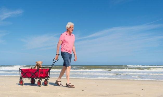 De 3 vigtigste ting du skal have med på en underholdende strandtur