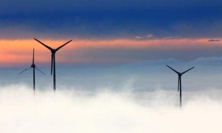 Tag på vindmøllesafari
