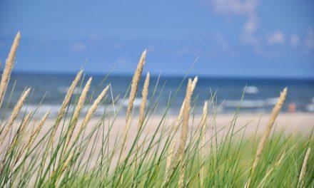 Guide: Sådan planlægger du en spontan ferie i Danmark